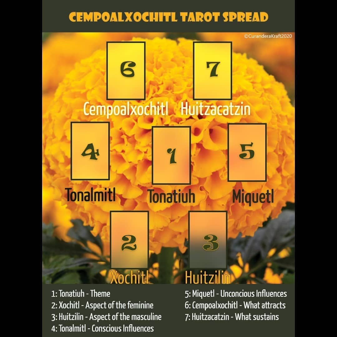 Cempoalxochitl Tarot Spread~~~This spread is for the Cempoalxochitl (20 petaled) flower, whose vibrant color and potent scent is used to lead the ancestors from the land of the dead into the home during Dia de Muertos. The story of the Cempoalxochitl begins with two children, Xochitl (flower) and Huitzilin (hummingbird) who shared a deep bond. They would climb the mountain to offer flowers and pray to Tonatiuh (Sun God) and in turn Tonatiuh would bathe them in warmth and bless the pair. With time, Xochitl and Huitzilin's bond grew deeper and stronger as they fell in love. Blessed by the rays of Tonatiuh, they swore to love each other for all time.Then war came and Huitzilin left to fight for his people. Word came to Xochitl that Huitzilin, wounded in battle, had died. Xochitl in her grief, ran to the top of the mountain and begged Tonatiuh to reunite her with her beloved Huitzilin. Tonatiuh moved by her prayers, touched her with a glowing ray of sunlight and turned her into a flower the color of the bursting sun, the Cempoalxochitl. In turn, Huitzilin was reborn as a Huitzacatzin/Huitzilin (hummingbird). Cempoalxochitl, her twenty petals remained closed until one day a curious Huitzacatzin landed on the flower and suddenly all twenty petals burst open with her radiant scent; the pair reunited once again.~~~Deck: Jade Oracle#nahuatlpractice #nahuatl#nahuatllanguage #nahuatlwords #diadelosmuertos #diademuertos #cempoalxóchitl #cempasuchil #huitzilin #dayofthedead #marigold #hummingbird #tarotreader #tarot #tarotreadersofinstagram #tarotspread #oraclereader #oracle #oraclecardreading #oraclecards #oracledeck #jadeoracle #jadeoraclereadings #jadeoraclecards #jadeoracledeck #oraclereadersofinstagram