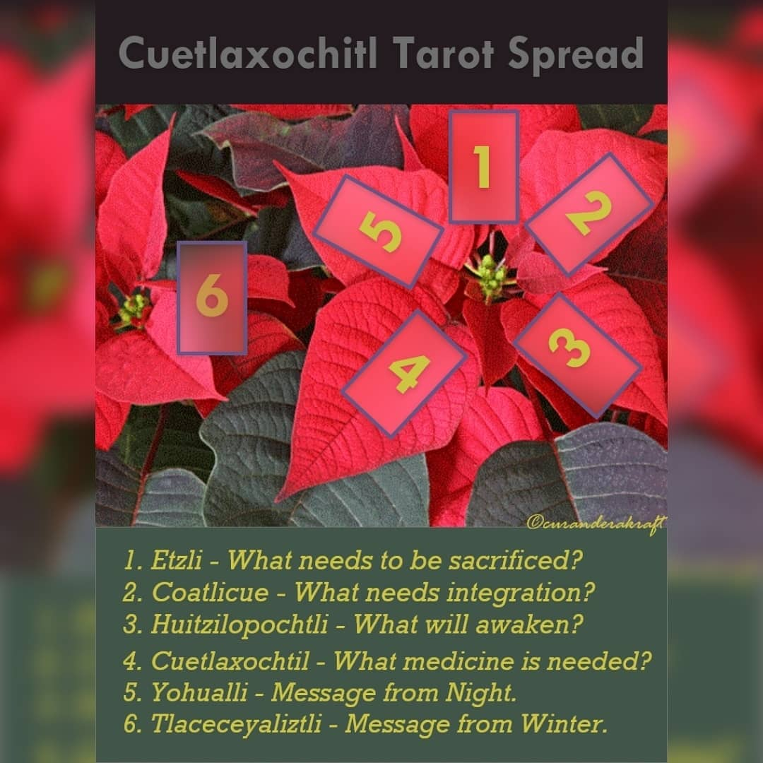 Cuetlaxochitl Tarot Spread~~~This tarot spread is for Cuetlaxochitl (hide or leather flower) who is sacred to the Aztecs and was used as a resource for medicines and dye.Cuetlaxochitl blooms from October to February, and came to be associated withHuitzilopochtli (hummingbird of the south or left), the Aztec god of the sun, Lord of War and the patron of the capital of Tenochtitlán.The bright red flowers adorned temples to Huitzilopochtli.Caravans of people carriedCuetlaxochitlin packs on their backs from the botanical gardens inOaxtepec, 60 miles away, to decorate andhonor Huitzilopochtli.Cuetlaxochitl came to represent there-birth of light on Earthduring the dark, winter months.This may be in relation to one version of Huitzilopochtli's originstory. Huitzilopochtli was born on the winter solstice, the longest night of the year.The story goes, Coatlicue (serpent skirt),mother of the Centzonhuitznahuah(400 southerners) and their older sister Coyolxauhqui (bells painted or on cheeks) was onCoatepec(Serpent Mountain) sweeping. A ball of feather down drifted from above and Coatlicue snatched it up and put it in the folds of her clothes. As soon as she finished sweeping she went to remove the feathers and nothing was there. At that moment, she concieved.Her children became angry with her and felt thismysterious pregnancy dishonored them.Coyolxauhqui rallied her siblings theCentzonhuitznahuac to kill their mother. Coatlicue hid until she gave birth to Huitzilopochtli, who was born full grown, dressed in armor and wieldingweapons. He defeatedthe Centzonhuitznahuacturning them into stars, and his sister,Coyolxauhqui, was decapitated, her body tossed over the mountain to shatter into pieces and her head was placed in the sky as the moon.The symbolic association to the rebirth of light may be seen in Cuetlaxochitl's appearance, thered leaves represent the blood of sacrifice or the sacred life force and the leaf pattern of the flower around its center can be seen as therays of 